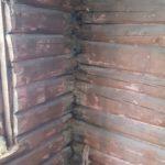 Råte i tømmerbygg